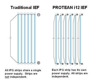 Diagram illustrating the difference between traditional IEF systems and the new PROTEAN i12 IEF system