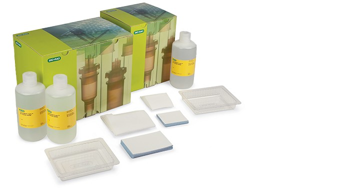 The economical Trans-Blot Turbo RTA transfer kit with all the components needed for western blotting.