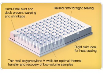 Hard-Shell PCR plate design that withstands the stresses of thermal cycling