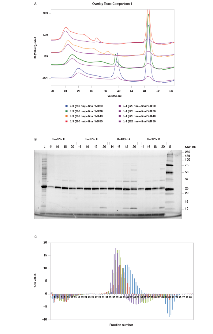 Scouting for appropriate percent B for protein purification