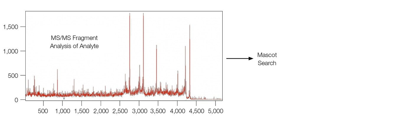 Data from MALDI-MS analysis of the analyte β-amyloid 1–40 fragment directly from the sensor chip surface