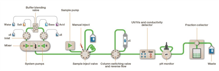 The easy visual flow path of the NGC chromatography system
