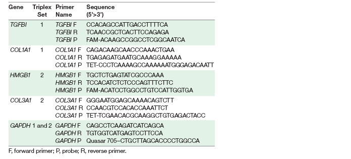Primer and probe information