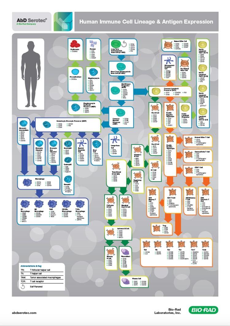 human-biomarker-poster-screenshot