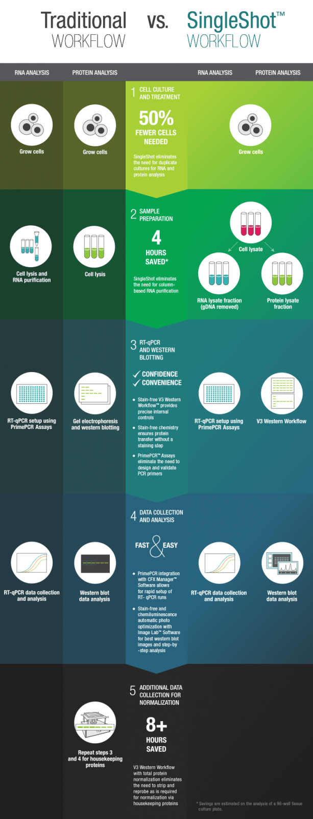 traditional-vs-singleshot-workflow-infographic