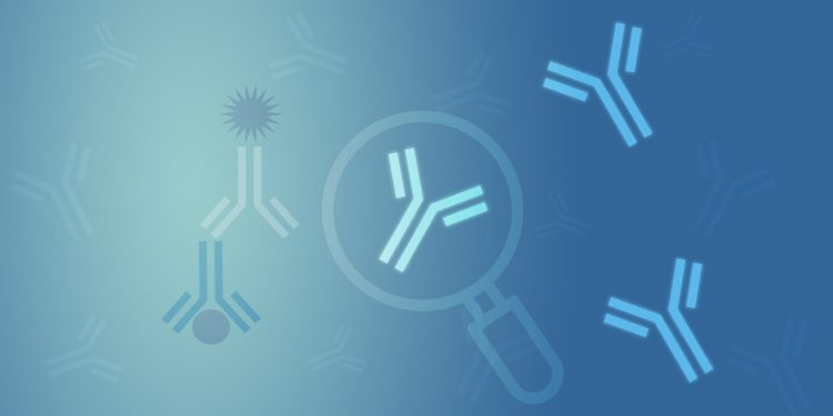 Finding a Good Antibody: Part I — Selecting the Best Antibodies.