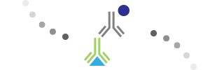 Match the antibody type to your application.