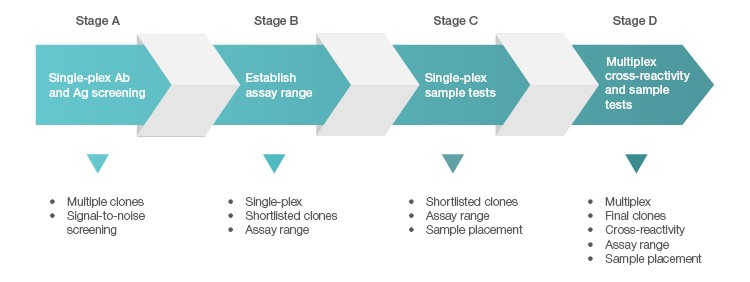 Fig. 1. Four-stage screening and qualification of antigens and antibodies.