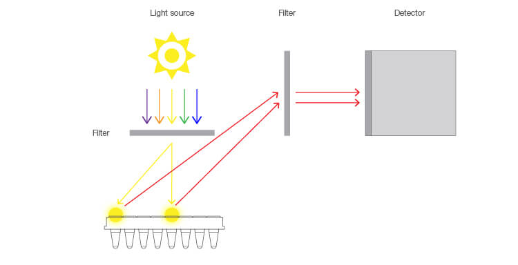 Fig. 1. Light path differences between wells of a lamp-based qPCR system.