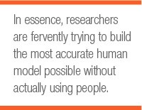 In essence, researchers are fervently trying to build the most accurate human model possible without actually using people.