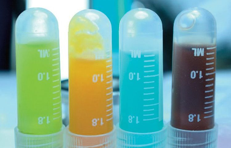 Test tubes with colorful liquid