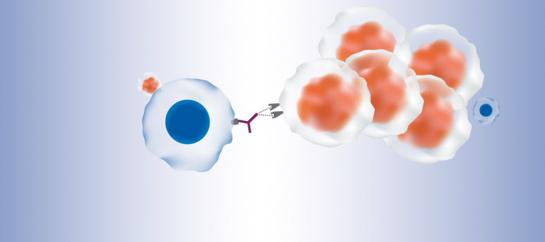 Moving Forward with Immunotherapies for Cancer