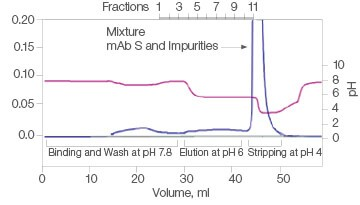 Fig. 1. Elutions of mAb S at pH 6.0.