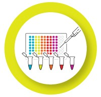 Validate individual assays before multiplexing icon